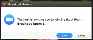 Joining a Deposition Breakout Room