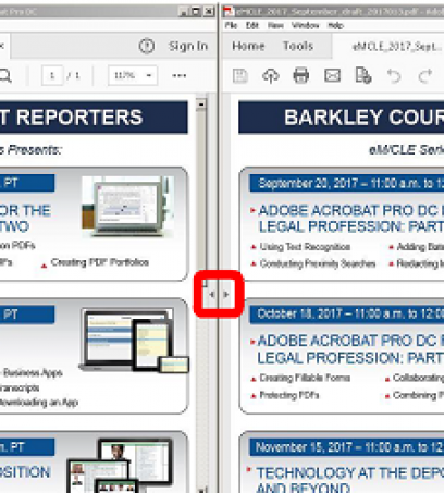 Can't Remember What the Transcript Says?  View Your PDFs Side-by-Side